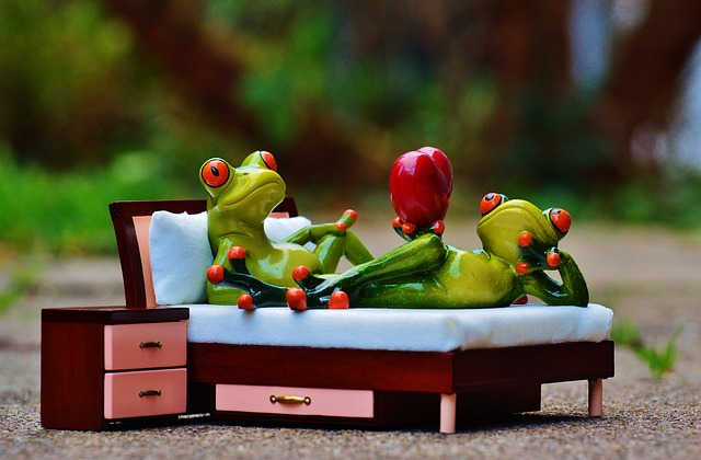 Frogs in bed